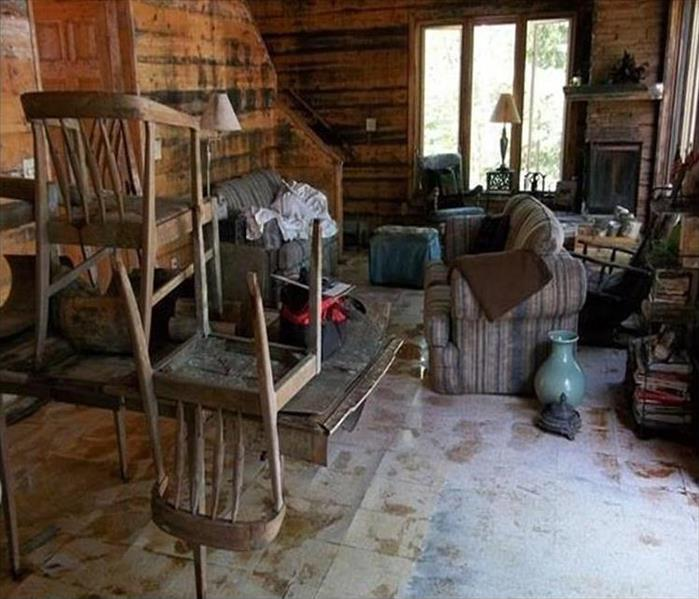 Bristol Cabin Is Infested with Mold Before