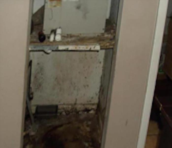 Abingdon Mold Infested A/C Closet